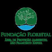 Fundacao florestal desafio